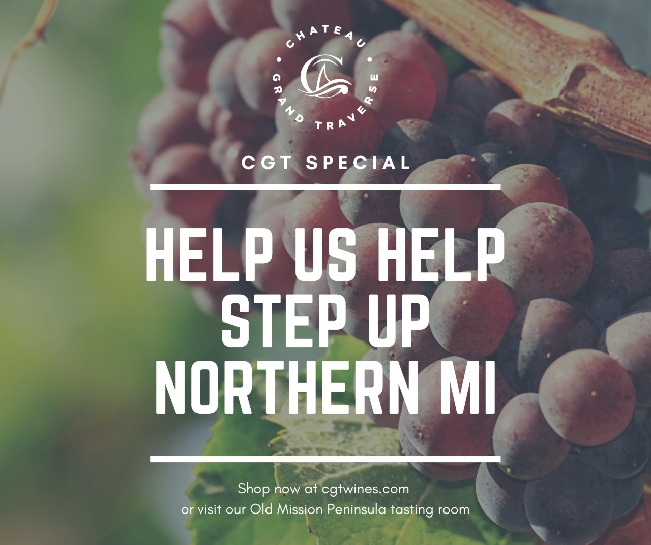 Give $5 to Step Up Northern MI